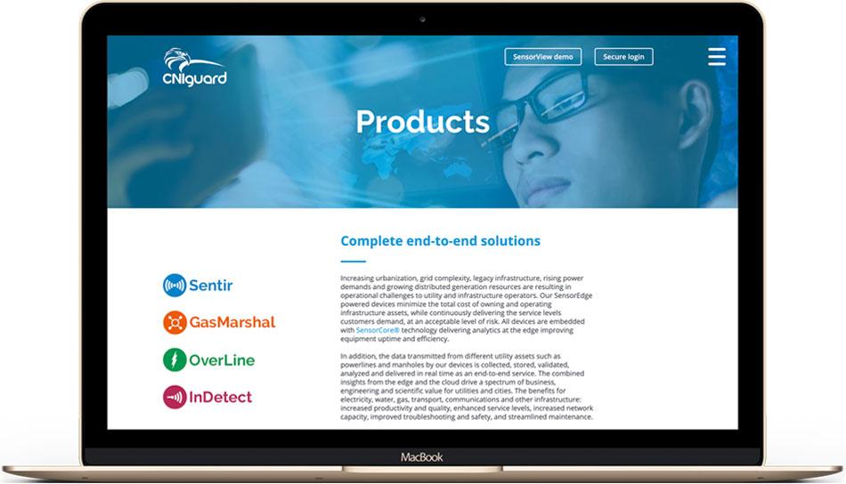 CNIguard web design