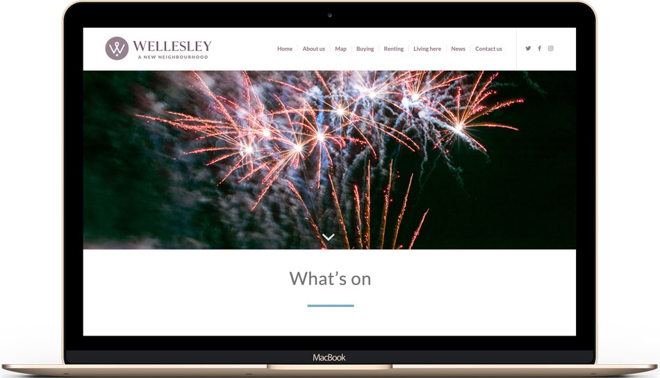 Wellesley website design